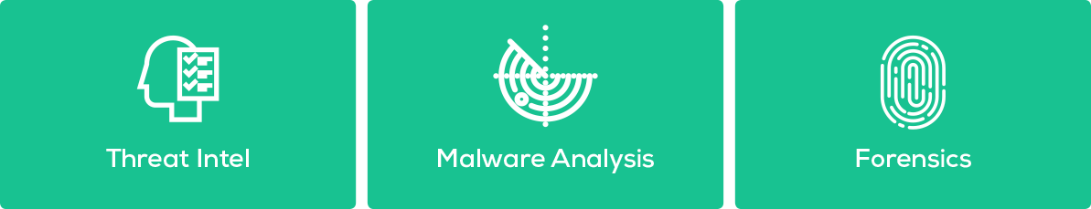 Threat intelligence, Malware analysis, Forensics