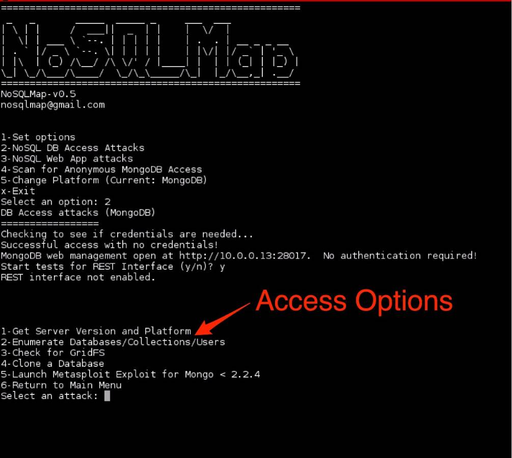 Figure 6: NoSQLMap database options